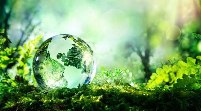 eco friendly franchise